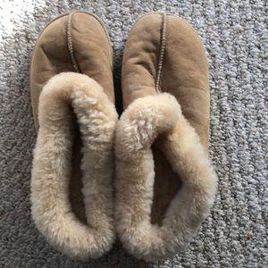 Acorn Sheepskin Slippers